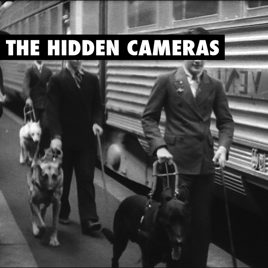 The Hidden Cameras - Year of the Spawn